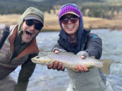 GALLATINRIVERBROWNTROUT2