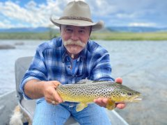 MADISONRIVERBROWNTROUT10