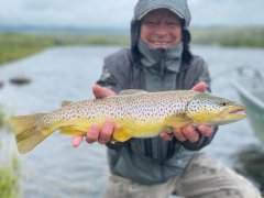 MADISONRIVERBROWNTROUT11