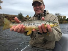 MADISONRIVERBROWNTROUT3
