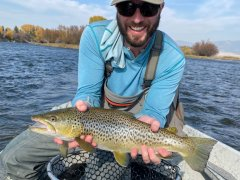 MADISONRIVERBROWNTROUT5
